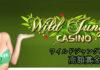3つのスロットで勝利合計165万円!ワイルドジャングルカジノ